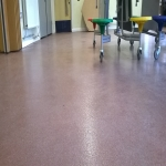 Resin Bound Surfacing in Anderson 8